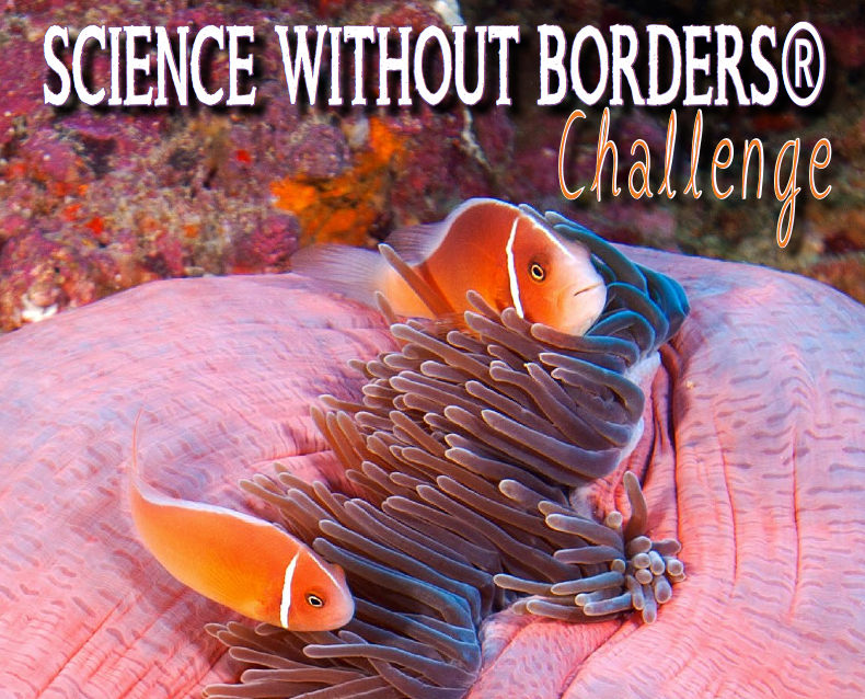 Science without Border Challenge 2019