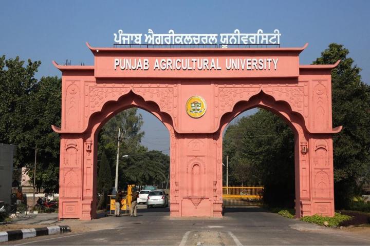 Punjab Agricultural University Admission 2020